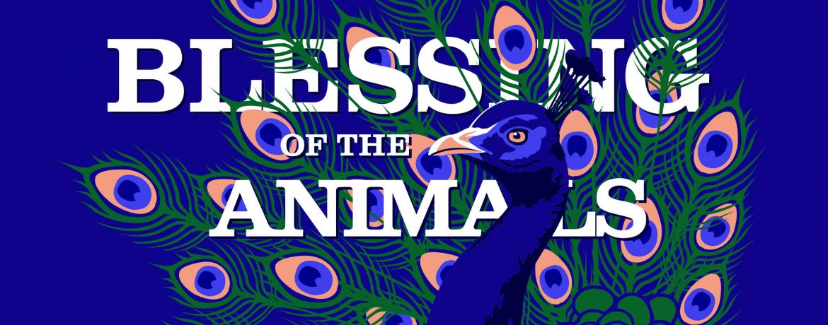 Blessing of the Animals 2017 web banner_peacock