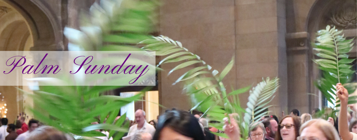 Palm Sunday web banner