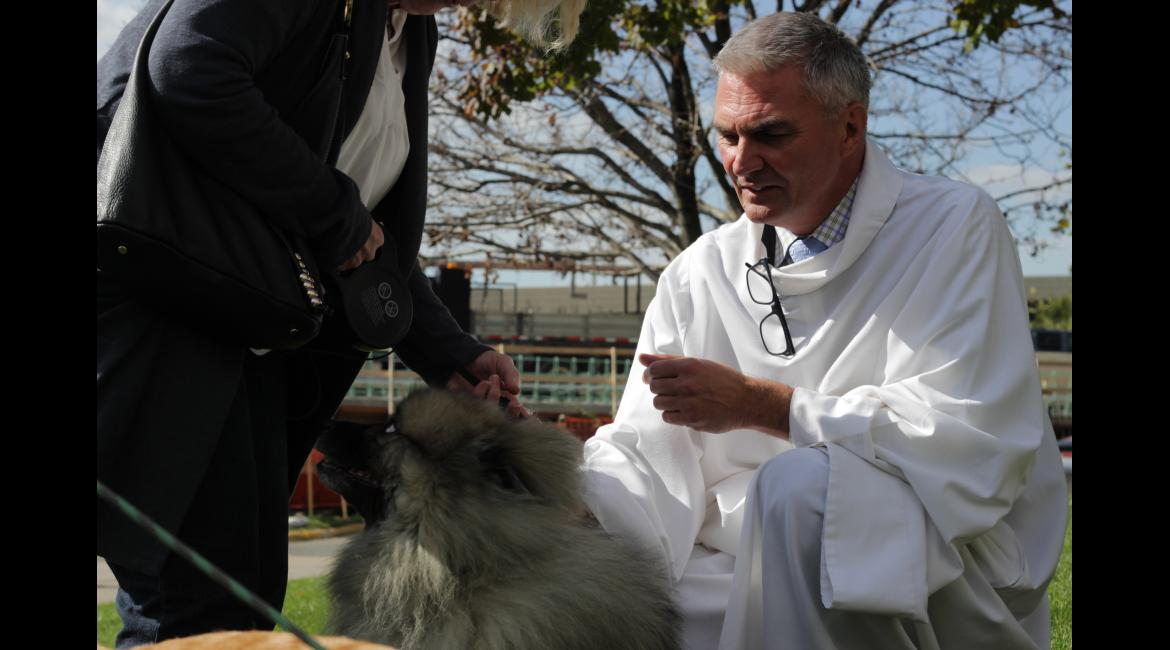 Johan van Parys, director of liturgy and sacred arts at the Basilica of Saint Mary prays over a pet during the Blessing of the Animals Oct. 4 at the Basilica. The blessing is an opportunity for pets and their owners to gather together and give thanks for all creation.